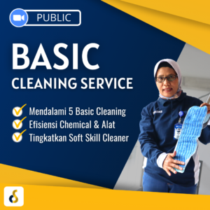 basic cleaning service